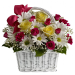 Seasonal Flowers for delivery in to India.