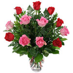 Seasonal Flowers for delivery in India.