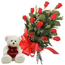 Combo of 12 Red Roses and Teddy